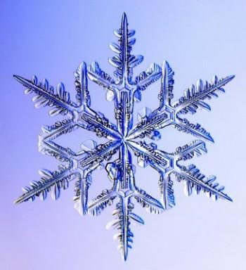 Neve chiama neve: cosa c'è di vero nella saggezza popolare?
