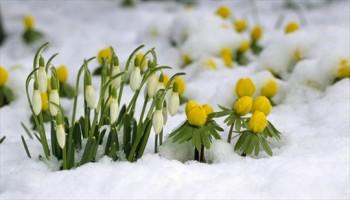 La primavera inizierà fredda e perturbata.
