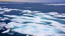 Estensione dei ghiacci globali ancora in negativo ad inizio 2017, continua il trend negativo del 2016