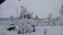 L'inverno piomba in Europa, stati orientali sotto quasi mezzo metro di neve [FOTO]