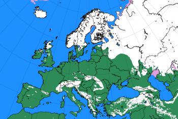 Gennaio inizia con poca neve su tutto il continente euro-asiatico