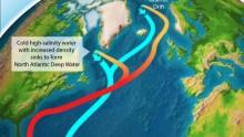 Cosa sta accadendo alla Corrente del Golfo?