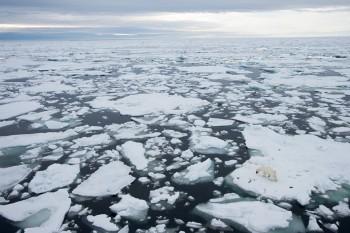 I ghiacciai della Groenlandia si sciolgono 4 volte più veloce del previsto