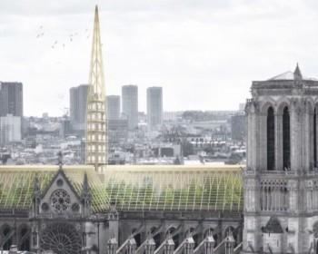 Restauro green per il tetto di Notre Dame, una grande serra didattica