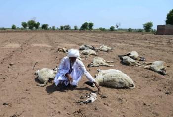 India svuotata dalla siccità, migliaia di persone costrette a fuggire