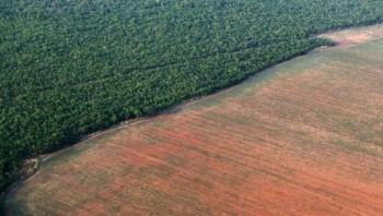 Approvati 1.200 pesticidi in Brasile, molti vietati nell'UE da decenni