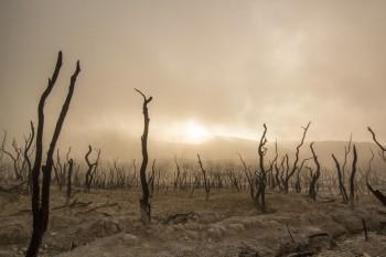 """Onu: il nostro pianeta rischia un """"apartheid climatico"""""""