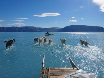 Questa foto rivela la realtà preoccupante dello scioglimento dei ghiacciai nell'Artico