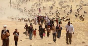 I migranti nel mondo sono 272 milioni e crescono più della popolazione globale