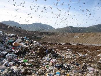 Primo rapporto Ispra sul danno ambientale in Italia, 30 casi accertati