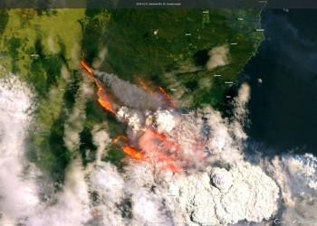 Australia: finalmente arriva la pioggia, ma la tragedia non è finita