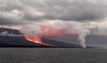 Eruzione nelle Galapagos, paura per animali in via di estinzione