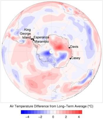 Antartide: cosa succede quando il caldo arriva nel luogo più freddo della Terra?