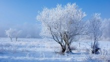 Gelo intenso sulle aree appenniniche: minime odierne localmente fino a -22°C in Abruzzo