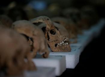 Gli umani si adattano e si evolvono insieme alle pandemie. Studio su 70mila scheletri